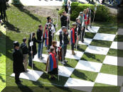 One side of Chess Pieces